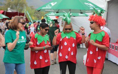 Jamestown Strawberry Festival 2018