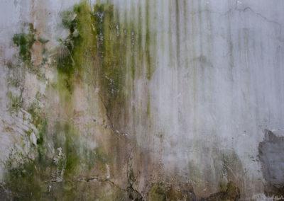 Walls in need of repair